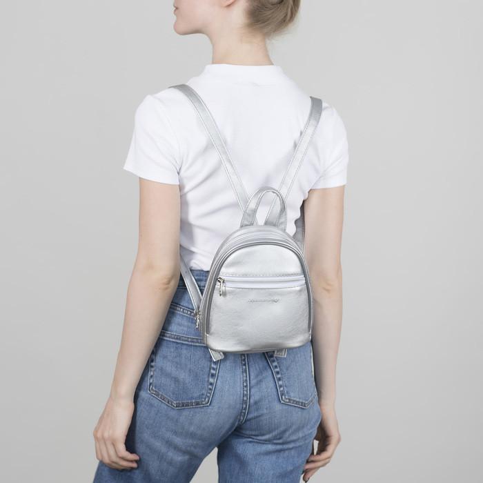 Рюкзак молодёжный, отдел на молнии, наружный карман, цвет серебро