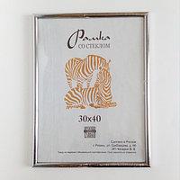 А3 рамка zebra пластмас