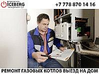 Ремонт, настройка, чистка и обслуживание газовых котлов Daewoo