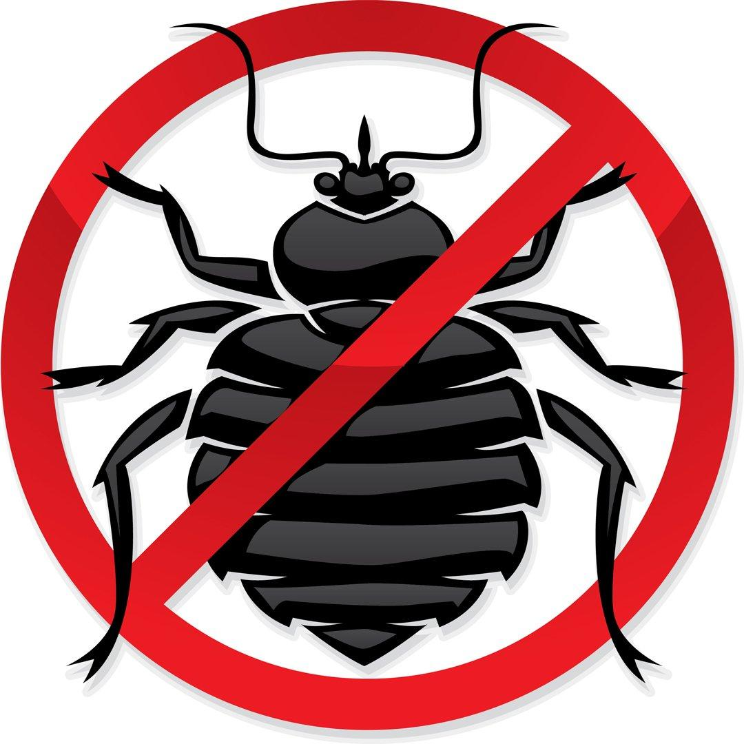 Уничтожение насекомых вредителей