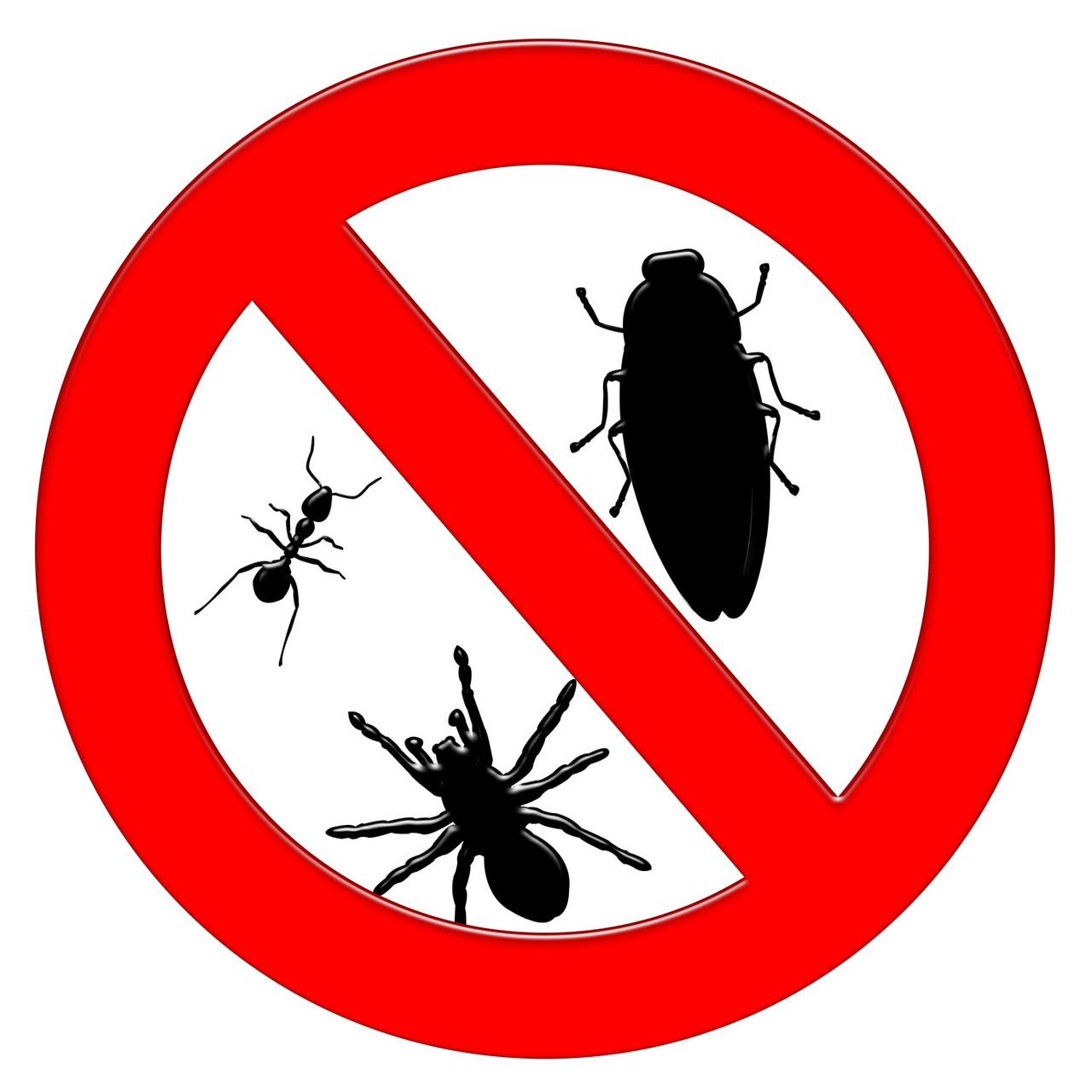 Уничтожение насекомых в квартире