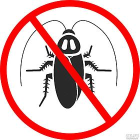 Дезинсекция от тараканов