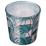 АВЛОНГ Неароматич свеча в стекл подсвечник,пальмовый лист зеленый , 7.5 см