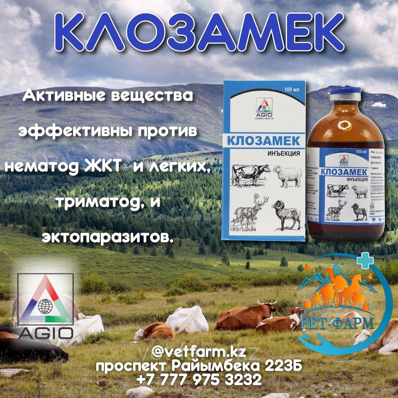 Клозамек 100мл (Clozamec)