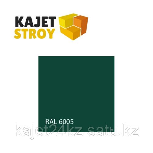 Порошковая краска BPC RAL 6005