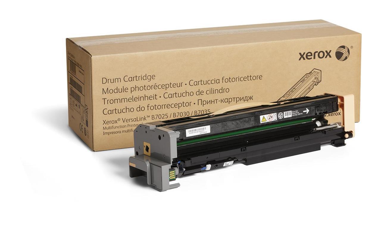 Принт-картридж Xerox 113R00779 (Принт-картридж, Xerox, 113R00779, Для Xerox VersaLink B7025/B7030/B7035, 80000