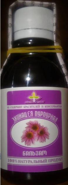 Эхинацея пурпурная, настойка, 100 мл