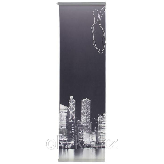 Штора рулонная 70 х 175 см, «Сити», цвет монохром