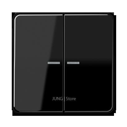 CD500 Клавиша 2-ная с 2-мя линзами, чёрн.