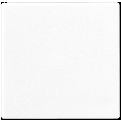 CD594-0PLWW - Jung Крышка без отверстий без каркаса для произвольных вырезов; белая