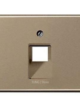 SL500 Накладка для комп. розетки 1хRJ45, бронза