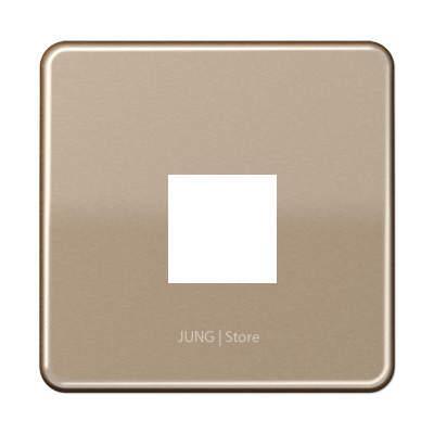 CD500 Накладка для комп. розетки 1хRJ45, бронз.