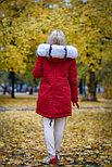 Меховая зимняя парка с капюшоном, фото 2