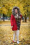 Зимняя женская парка с мехом енота, фото 5