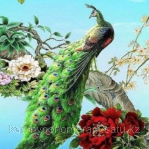 """Картина по номерам """"Павлин на цветущей ветке"""""""