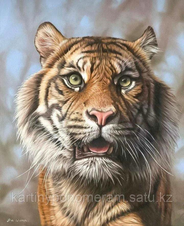 """Картина по номерам """"Взгляд тигра"""""""