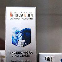 Китайские лечебные травы Африканский лев, фото 1