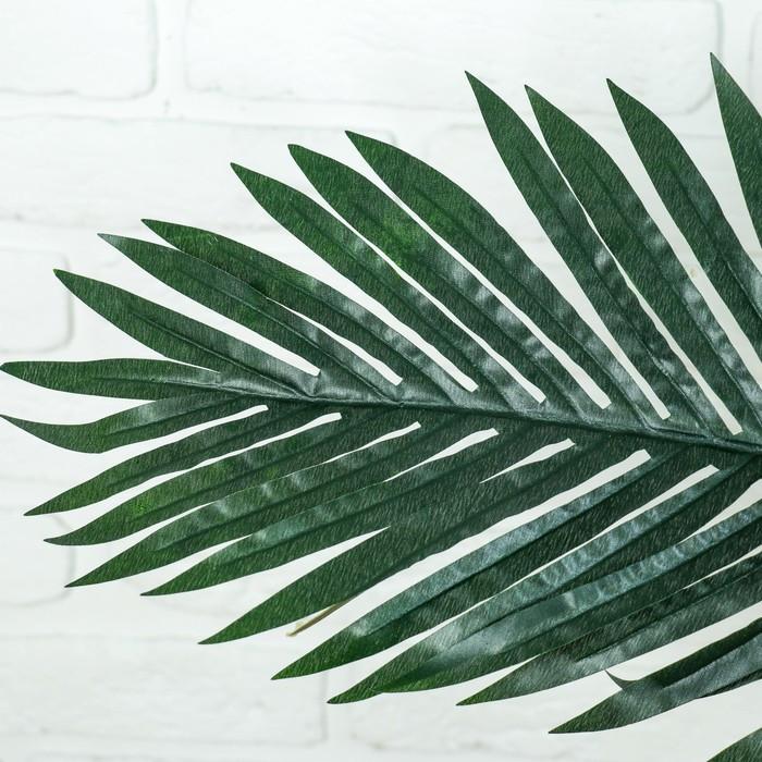 """Дерево искусственное """"Пальма"""" - фото 2"""