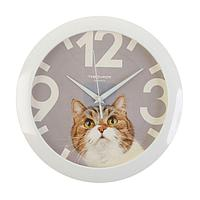 """Часы настенные, серия: Животный мир, """"Кот"""", белый обод, 29х29 см"""