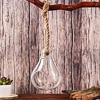 """Флорариум """"Лампа"""" диам.отверст.5см; 9*9*13 см (с верёвкой), фото 1"""