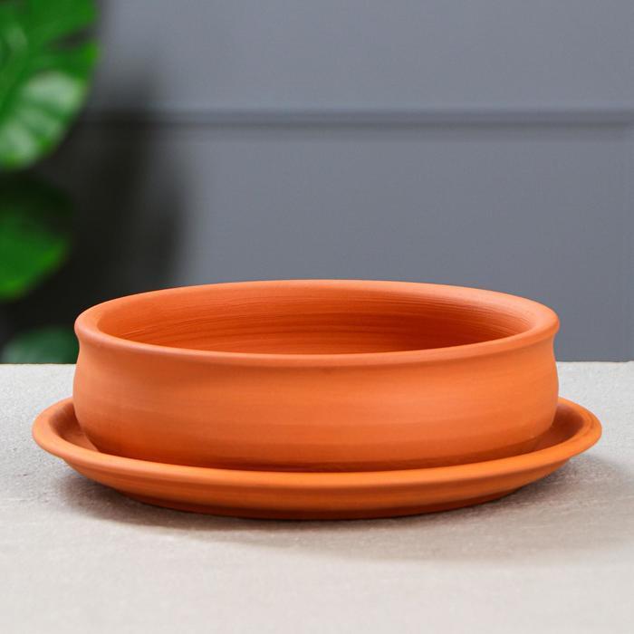 Горшок для кактусов и суккулентов «Бонсайница», Ø 20 см