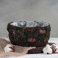 Кашпо плетёное круглое «Лесная сказка», 20×20×10 см