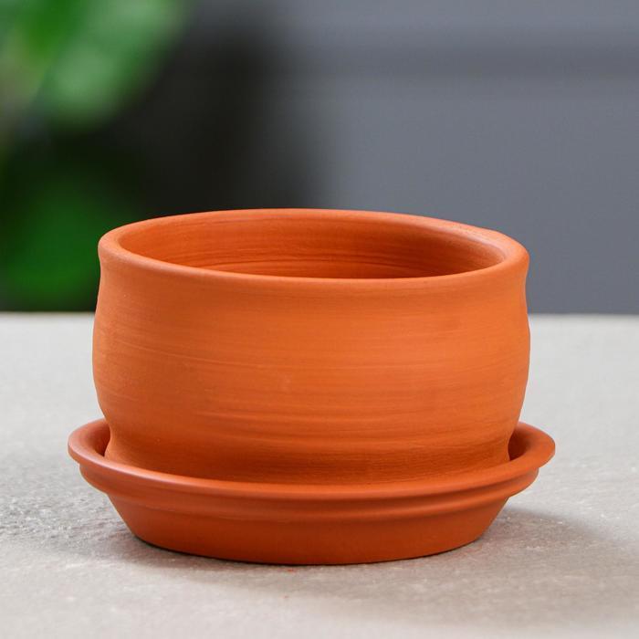 Горшок для кактусов и суккулентов «Бонсайница», Ø 10 см