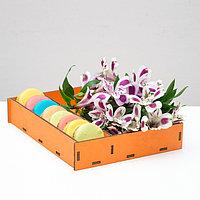 Ящик-коробка «Макарунас», оранжевый, 25,5 х 20 х 4,5 см, фото 1