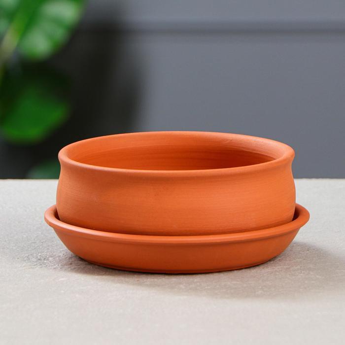 Горшок для кактусов и суккулентов «Бонсайница», Ø 15 см