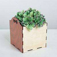 Кашпо флористическое «Полоски», красный, 15 × 15 × 16.8 см