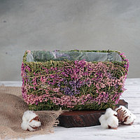 Кашпо плетёное прямоугольное «Фея», 24×18×12 см