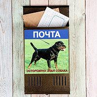 Ящик почтовый без замка (с петлёй), вертикальный, «Фото», МИКС, бронзовый, фото 1