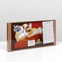 Домашняя когтеточка-лежанка для кошек 50 x 24 (когтедралка), фото 1