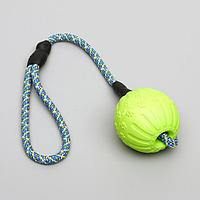 Мяч из EVA для дрессировки 7 см, на канате, микс цветов