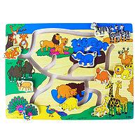 Лабиринт «Зоопарк», цветной фон