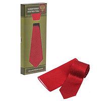 """Подарочный набор: галстук и платок """"Защитнику Отечества"""""""