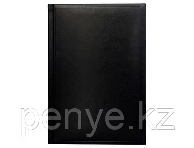 Датированный ежедневник А5 Frame (Фрэйм) черный