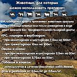 Альбендазол Форте 100мл, фото 2