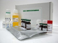 Гонадотропин рилизинг-фактор (ЛГ-РГ) (с экстракцией) (не для использования в медицинских целях)