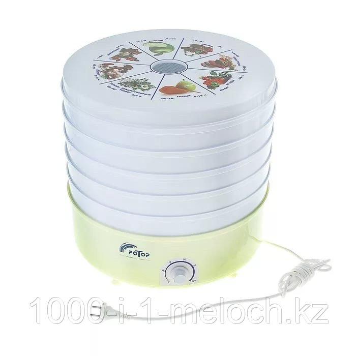 Электро Сушилка для овощей и фруктов (Ротор) - фото 3