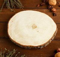 Спил ели, шлифованный с одной стороны, диаметр 20-25 см, толщина 2-3 см