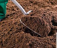 Планировка участка с завозом плодородного грунта