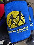 Сумка поясная NORDIC WALKING (синяя), фото 3