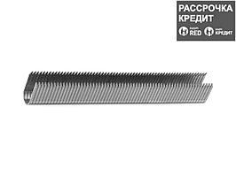 ЗУБР 14 мм скобы для степлера кабельные тип 36, 1000 шт (31612-14_z01)