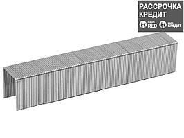 ЗУБР 8 мм скобы для степлера тонкие тип 53, 1000 шт (31620-08_z01)