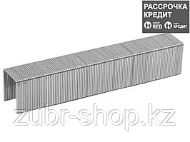 ЗУБР 12 мм скобы для степлера тонкие тип 53, 1000 шт (31620-12_z01)