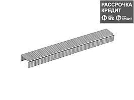 ЗУБР 6 мм скобы для степлера плоские тип 140, 1000 шт (31630-06_z01)