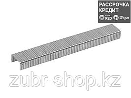 ЗУБР 8 мм скобы для степлера плоские тип 140, 1000 шт (31630-08_z01)