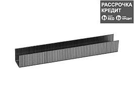 ЗУБР 10 мм скобы для степлера плоские тип 140, 1000 шт (31630-10_z01)