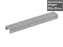 ЗУБР 12 мм скобы для степлера плоские тип 140, 1000 шт (31630-12_z01)